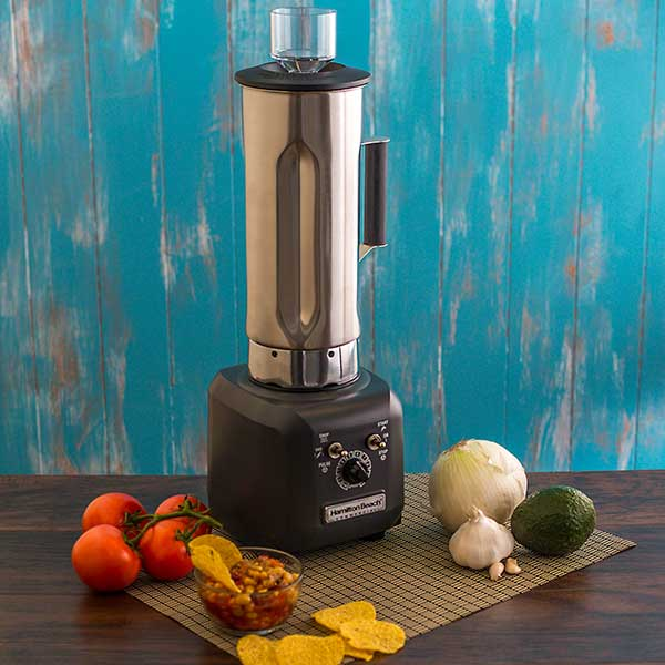 Culinary Blender HBF500S