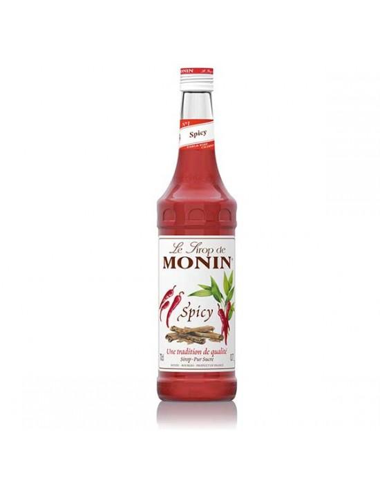 Monin Spicy syrup 0.7l